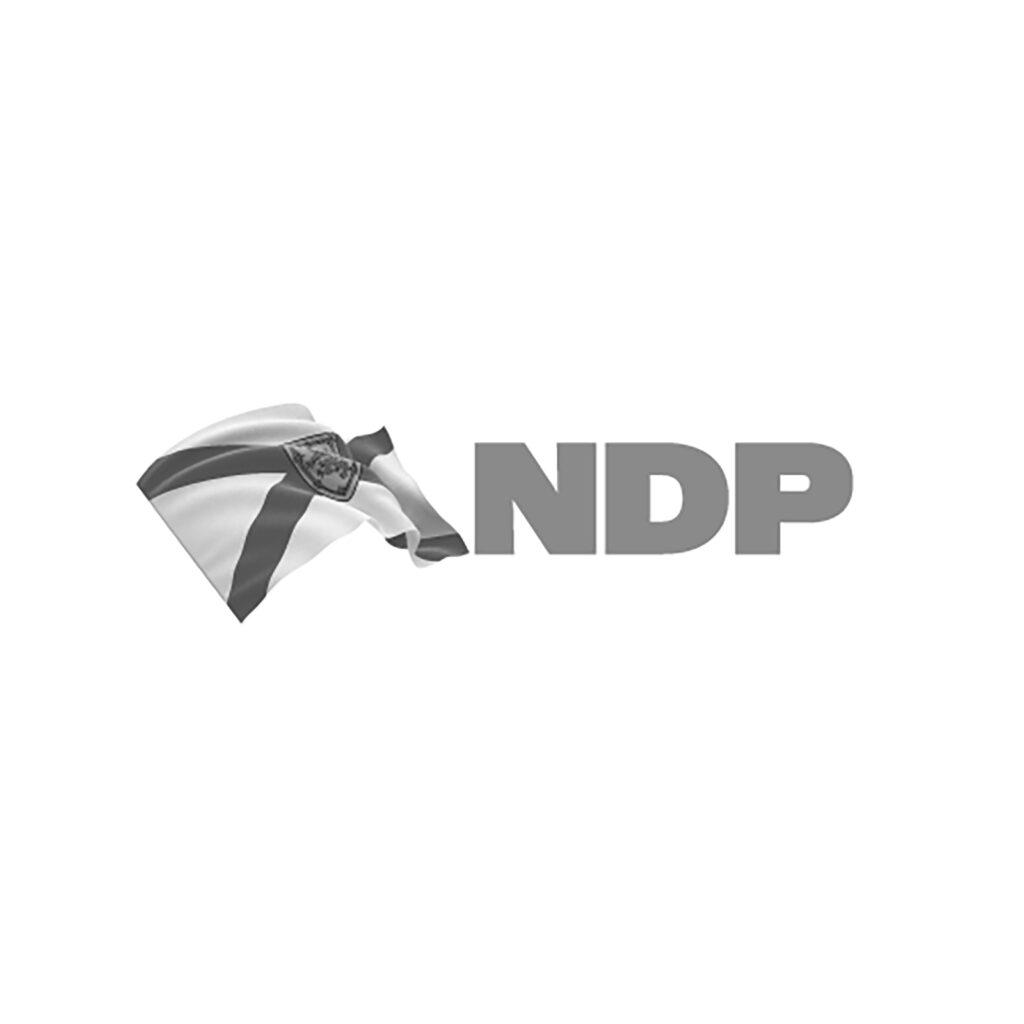 NS NDP
